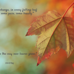 creativity, change, fall, leaves, orange, creative flow