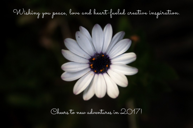 appreciation, creativity, new year, white flower, peace, love, inspiration