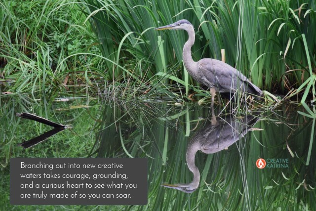 branching out into new creative waters, creativity, creative katrina, blog, mindbodyspirit, heron, water, transformation, patience