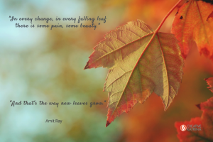 Wisdom of the Leaves and Flowing with Change